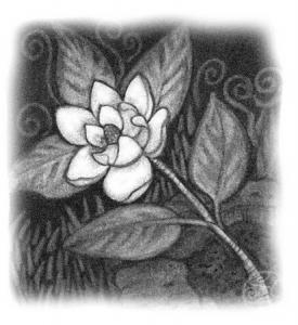 harvestflower