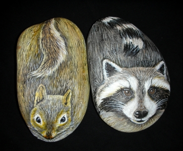 squirrelracoon