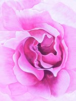 rosemystic5x7
