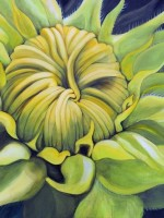 sunflowerhopesm
